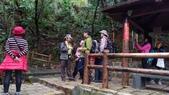 1080310_金面山步道: