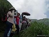 98親山培訓-8.15七星山(攝影鄧麗卿):P1020592-1.JPG