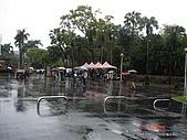 顏貝忠攝影記錄-2009.3.7台大步道(假日生態導覽):DSC00015.JPG