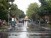 顏貝忠攝影記錄-2009.3.7台大步道(假日生態導覽):DSC00020.JPG
