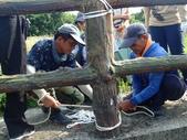 1070725基隆河口中八仙猛禽棲架: