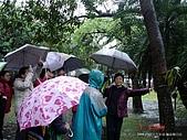 顏貝忠攝影記錄-2009.3.7台大步道(假日生態導覽):DSC00044.JPG