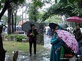 顏貝忠攝影記錄-2009.3.7台大步道(假日生態導覽):DSC00049.JPG