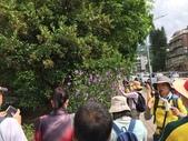 107.08.05-假日導覽-大溝溪圓覺步道: