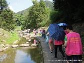 2015.8.1-大溝溪親山步道(華山扶輪社):2015.8.1 大溝溪親山步道  (9).JPG