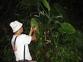 2009「壯遊台灣」-夜觀:IMG_3984.JPG