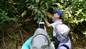 107.04.29-107年度「步道生態環境教育訓練課程」:和107.4.29北投軍艦岩真遊趣_180502_0022.jpg