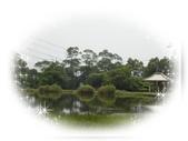 20070331大屯山:DSCN6796-1