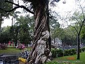 顏貝忠攝影記錄-2009.3.7台大步道(假日生態導覽):DSC00062.JPG