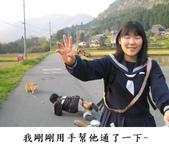 2016翻譯:手.jpg