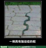 翻譯:蛇.jpg