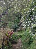 四獸山親山步道健行上拇指山:0412_0059.jpg