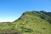 (嘉明湖 Day 2)向陽山屋->向陽山->嘉明湖避難小屋:DSC_7509.JPG