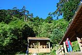 (嘉明湖 Day 2)向陽山屋->向陽山->嘉明湖避難小屋:DSC_7357.JPG