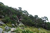 (嘉明湖 Day 2)向陽山屋->向陽山->嘉明湖避難小屋:DSC_7699.JPG