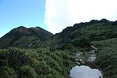 (嘉明湖 Day 2)向陽山屋->向陽山->嘉明湖避難小屋:DSC_7608.JPG