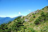 (嘉明湖 Day 2)向陽山屋->向陽山->嘉明湖避難小屋:DSC_7424.JPG