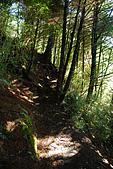 (嘉明湖 Day 2)向陽山屋->向陽山->嘉明湖避難小屋:DSC_7368.JPG