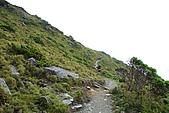 (嘉明湖 Day 2)向陽山屋->向陽山->嘉明湖避難小屋:DSC_7702.JPG