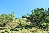 (嘉明湖 Day 2)向陽山屋->向陽山->嘉明湖避難小屋:DSC_7400.JPG