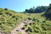 (嘉明湖 Day 2)向陽山屋->向陽山->嘉明湖避難小屋:DSC_7461.JPG