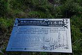 (嘉明湖 Day 2)向陽山屋->向陽山->嘉明湖避難小屋:DSC_7554.JPG