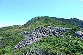 (嘉明湖 Day 2)向陽山屋->向陽山->嘉明湖避難小屋:DSC_7540.JPG