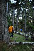火石山~大南山鞍部營地(雪山西稜Day2):DSC_3474.JPG