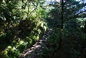 (嘉明湖 Day 2)向陽山屋->向陽山->嘉明湖避難小屋:DSC_7370.JPG