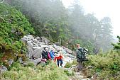 (嘉明湖 Day 2)向陽山屋->向陽山->嘉明湖避難小屋:DSC_7712.JPG