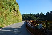 太平山~加羅湖(太加縱走 Day1):CSC_9803.JPG