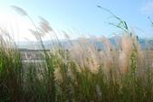 宜蘭員山單車遊(太陽埤、內城社區):DSC_6071.JPG
