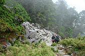(嘉明湖 Day 2)向陽山屋->向陽山->嘉明湖避難小屋:DSC_7714.JPG