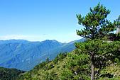 (嘉明湖 Day 2)向陽山屋->向陽山->嘉明湖避難小屋:DSC_7410.JPG