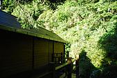 (嘉明湖 Day 2)向陽山屋->向陽山->嘉明湖避難小屋:DSC_7365.JPG
