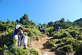 (嘉明湖 Day 2)向陽山屋->向陽山->嘉明湖避難小屋:DSC_7412.JPG