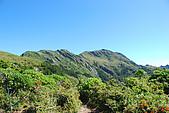 (嘉明湖 Day 2)向陽山屋->向陽山->嘉明湖避難小屋:DSC_7467.JPG