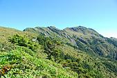 (嘉明湖 Day 2)向陽山屋->向陽山->嘉明湖避難小屋:DSC_7489.JPG