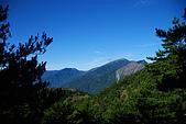 (嘉明湖 Day 2)向陽山屋->向陽山->嘉明湖避難小屋:DSC_7379.JPG