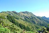 (嘉明湖 Day 2)向陽山屋->向陽山->嘉明湖避難小屋:DSC_7470.JPG