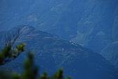 (嘉明湖 Day 2)向陽山屋->向陽山->嘉明湖避難小屋:DSC_7385.JPG