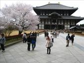 2009-京都大阪自由行:1670223779.jpg