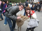 2009-京都大阪自由行:1670223766.jpg