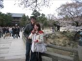 2009-京都大阪自由行:1670223767.jpg