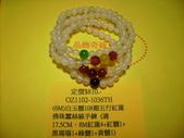 101.03月目錄:產品IMG_0005.JPG