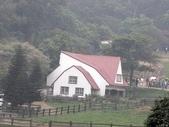 旅遊:飛牛牧場