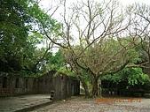 大武崙砲台+ 唐辛子:DSCN0204.JPG