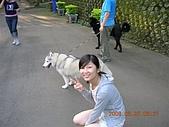 新竹市:DSCN9804.JPG