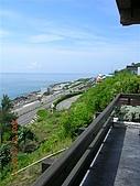 花蓮海岸:DSCN0688.JPG