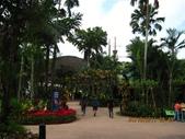 新加坡 裕廊飛禽公園:IMG_3294.JPG